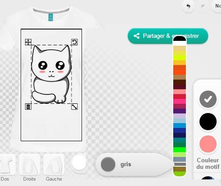 Réglage des couleurs du design, choisir les couleurs du chat.